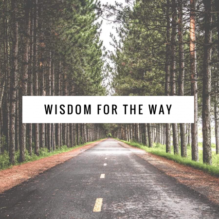 New Study Series in Proverbs
